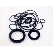 Bertolini PA/S/PBO 1100-1250 ремкомплект резиновых уплотнений (сальники, кольца) KIT 359880973